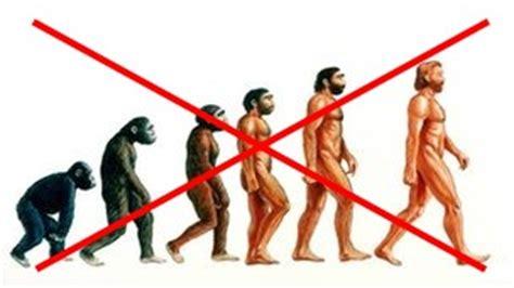 Australopithecus afarensis essay Becoming Human